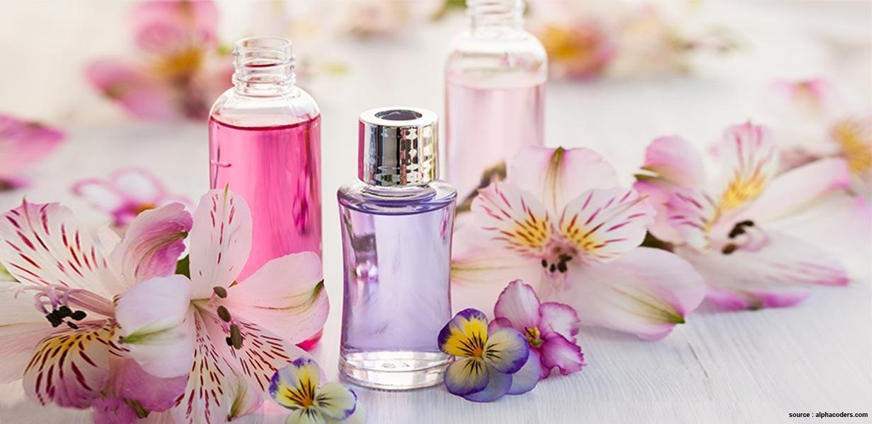 Summer Perfumes For Men And Women